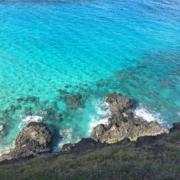 ハワイの青い海